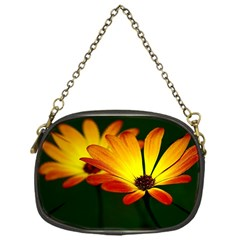 Osterspermum Chain Purse (One Side)