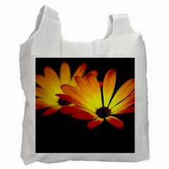 Osterspermum Recycle Bag (Two Sides)