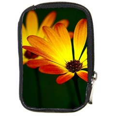 Osterspermum Compact Camera Leather Case