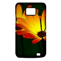 Osterspermum Samsung Galaxy S II Hardshell Case (PC+Silicone)