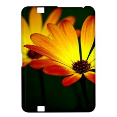 Osterspermum Kindle Fire HD 8.9  Hardshell Case