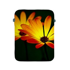 Osterspermum Apple Ipad 2/3/4 Protective Soft Case