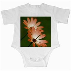 Osterspermum Infant Bodysuit