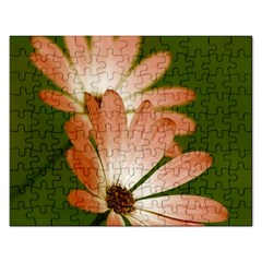 Osterspermum Jigsaw Puzzle (Rectangle)