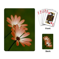 Osterspermum Playing Cards Single Design
