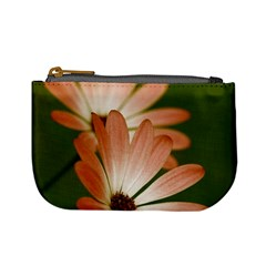 Osterspermum Coin Change Purse
