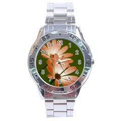 Osterspermum Stainless Steel Watch (Men s)