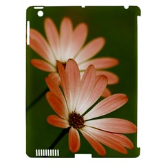 Osterspermum Apple Ipad 3/4 Hardshell Case (compatible With Smart Cover)