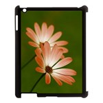 Osterspermum Apple iPad 3/4 Case (Black) Front