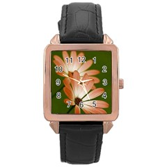 Osterspermum Rose Gold Leather Watch