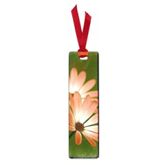 Osterspermum Small Bookmark