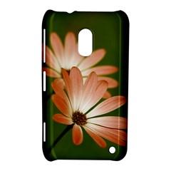 Osterspermum Nokia Lumia 620 Hardshell Case