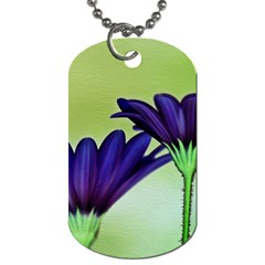 Osterspermum Dog Tag (One Sided)