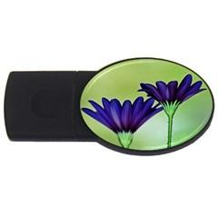 Osterspermum 4GB USB Flash Drive (Oval)