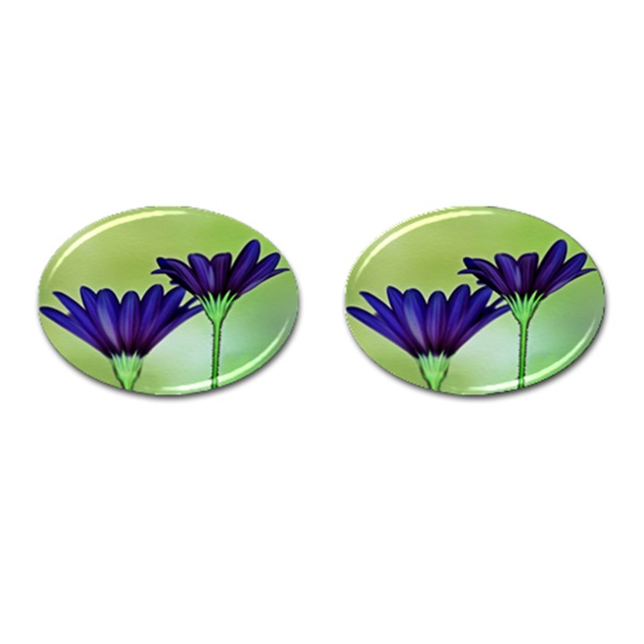 Osterspermum Cufflinks (Oval)