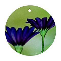Osterspermum Round Ornament (Two Sides)