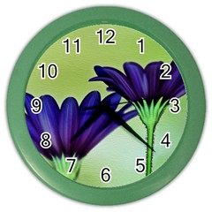 Osterspermum Wall Clock (color)