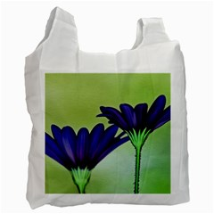 Osterspermum Recycle Bag (One Side)