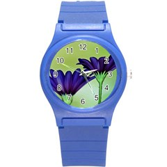 Osterspermum Plastic Sport Watch (Small)