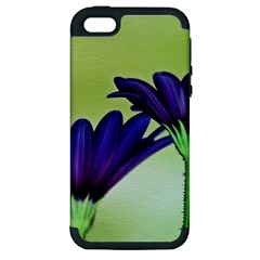 Osterspermum Apple iPhone 5 Hardshell Case (PC+Silicone)