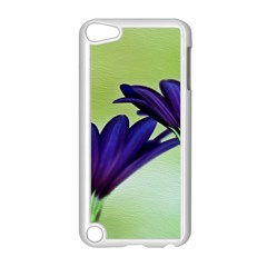 Osterspermum Apple iPod Touch 5 Case (White)