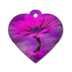 Osterspermum Dog Tag Heart (One Sided)