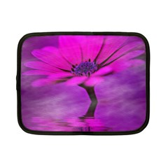 Osterspermum Netbook Case (small)