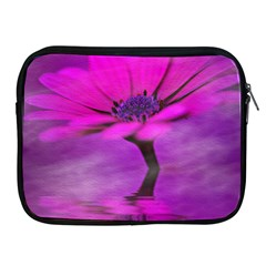 Osterspermum Apple iPad 2/3/4 Zipper Case