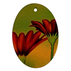 Osterspermum Oval Ornament