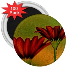 Osterspermum 3  Button Magnet (100 pack)