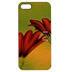 Osterspermum Apple Iphone 5 Hardshell Case With Stand