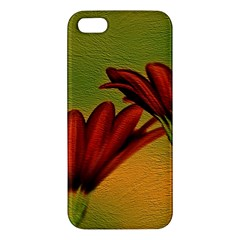 Osterspermum iPhone 5S Premium Hardshell Case