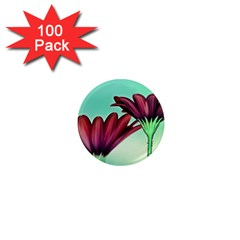 Osterspermum 1  Mini Button Magnet (100 Pack)