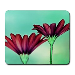 Osterspermum Large Mouse Pad (rectangle)