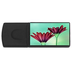 Osterspermum 4GB USB Flash Drive (Rectangle)