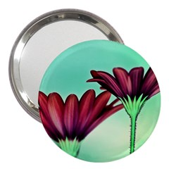 Osterspermum 3  Handbag Mirror