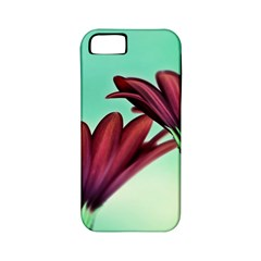 Osterspermum Apple Iphone 5 Classic Hardshell Case (pc+silicone)