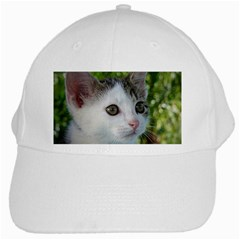 Young Cat White Baseball Cap