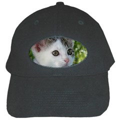 Young Cat Black Baseball Cap