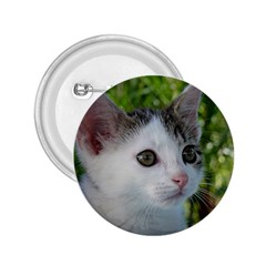 Young Cat 2.25  Button