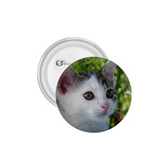 Young Cat 1.75  Button