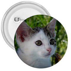 Young Cat 3  Button