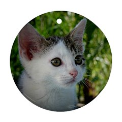 Young Cat Round Ornament
