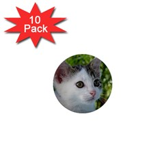 Young Cat 1  Mini Button (10 pack)
