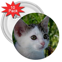 Young Cat 3  Button (10 pack)