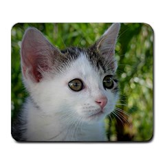 Young Cat Large Mouse Pad (Rectangle)