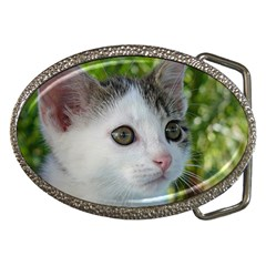 Young Cat Belt Buckle (Oval)
