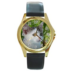 Young Cat Round Metal Watch (Gold Rim)
