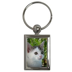 Young Cat Key Chain (Rectangle)