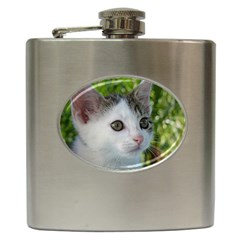 Young Cat Hip Flask